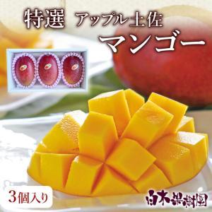 MAN-3 高知県産特選アップル土佐マンゴー 2Lサイズ3個...