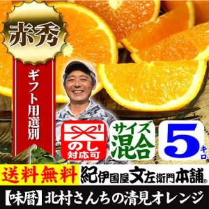 清見オレンジ5kg サイズおまかせ  有田みかん豊作会  和歌山県から産地直送|bunza