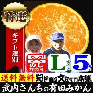 みかん 和歌山みかん 武内さんちの有田みかん(Lサイズ)約5kg 厳選果実 特選ギフト|bunza
