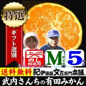 和歌山みかん 有田みかん 産地直送 武内さんちの有田みかん(Mサイズ)約5kg 厳選果実を贈る 特選ギフト|bunza
