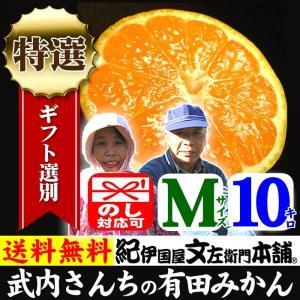 和歌山みかん 産地直送 武内さんちの有田みかん(Mサイズ)約10kg 厳選ギフト|bunza