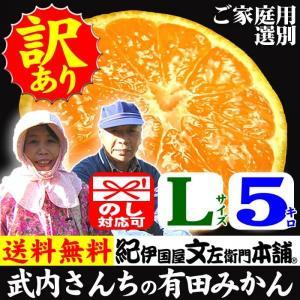 和歌山の有田みかん 武内さんちの有田みかん(Lサイズ)約5kg ご家庭用 訳あり|bunza