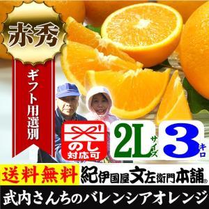 武内さんちの国産バレンシアオレンジ ギフト用(秀)選別 2Lサイズ 3kg|bunza