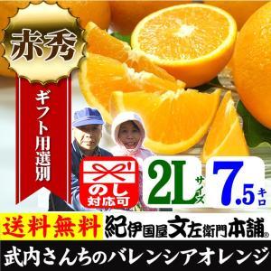 武内さんちの国産バレンシアオレンジ ギフト用(秀)選別 2Lサイズ7.5kg|bunza