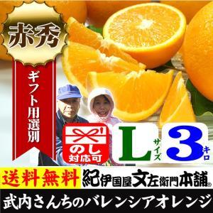 武内さんちの国産バレンシアオレンジ ギフト用(秀)選別 Lサイズ 3kg|bunza