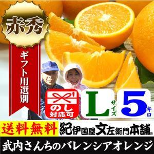 武内さんちの国産バレンシアオレンジ ギフト用(秀)選別 Lサイズ5kg|bunza