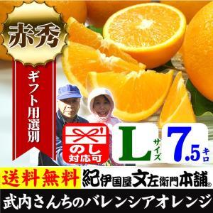 武内さんちの国産バレンシアオレンジ ギフト用(秀)選別 Lサイズ7.5kg|bunza