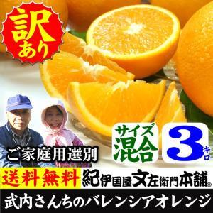 武内さんちのバレンシアオレンジ ご家庭用 サイズ混合 3kg|bunza