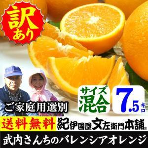 武内さんちの国産バレンシアオレンジご家庭用 選別 サイズ混合7.5kg|bunza