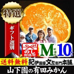 和歌山有田みかん 山下園の有田みかん 厳選ギフト (Mサイズ) 約10kg 正しくは「ありたみかん」ではなく、「ありだみかん」です。温州みかん bunza