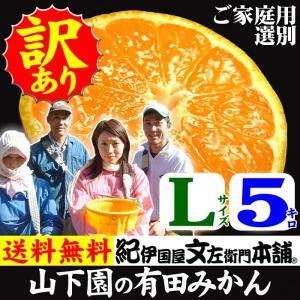 和歌山有田みかん 山下園の有田みかん ご家庭用 (Lサイズ) 約5kg 温州みかん・正しくは「ありたみかん」ではなく、「ありだみかん」です bunza