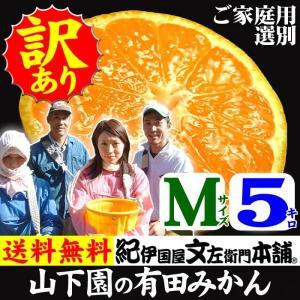 和歌山有田みかん 山下園の有田みかん ご家庭用 (Mサイズ) 約5kg 温州みかん・正しくは「ありたみかん」ではなく、「ありだみかん」です bunza