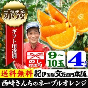 西崎さんちのネーブルオレンジ 特選ギフト (4kg 9玉〜10玉) 和歌山有田産 |bunza
