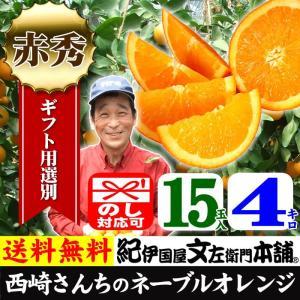 西崎さんちのネーブルオレンジ 特選ギフト (4kg 15玉) 和歌山有田産|bunza