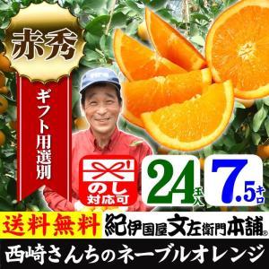 西崎さんちのネーブルオレンジ 特選ギフト (7.5kg 24玉) 和歌山有田産|bunza