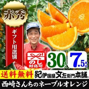 西崎さんちのネーブルオレンジ 特選ギフト (7.5kg 30玉) 和歌山有田産|bunza