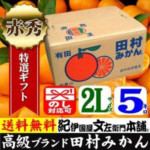 田村みかん (特選)贈答用ギフト選別品(2Lサイズ・5kg)1箱=約30果前後( LL ) 和歌山みかん有田みかんの最高ブランド果実|bunza