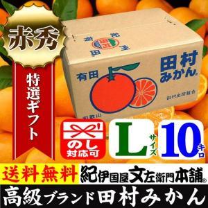 田村みかん (特選)贈答用ギフト選別品(Lサイズ・10kg)1箱=約80果前後 和歌山みかん有田みかんの最高ブランド果実|bunza