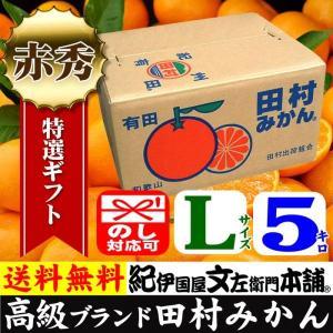 田村みかん (特選)贈答用ギフト選別品(Lサイズ・5kg)1箱=約40果前後 和歌山みかん有田みかんの最高ブランド果実|bunza