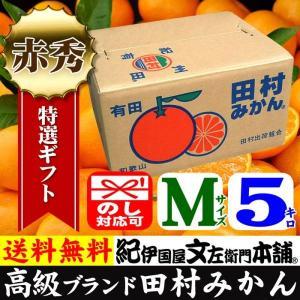 田村みかん (特選)贈答用ギフト選別品(Mサイズ・5kg)1箱=約50果前後 和歌山みかん有田みかんの最高ブランド果実|bunza
