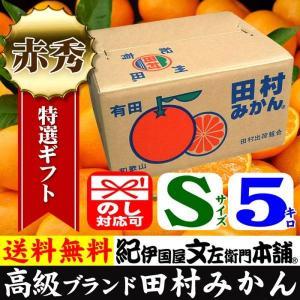 田村みかん (特選)贈答用ギフト選別品(Sサイズ・5kg)1箱=約60果前後 和歌山みかん有田みかんの最高ブランド果実|bunza