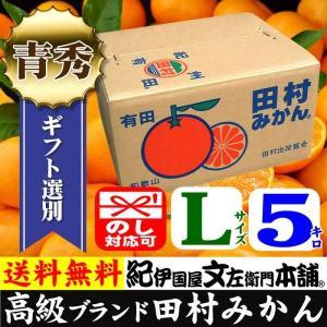 田村みかん 贈答用ギフト選別品 (Lサイズ・5kg)1箱=約40果前後和歌山有田みかんの最高ブランドを贈る ギフト選別果実|bunza