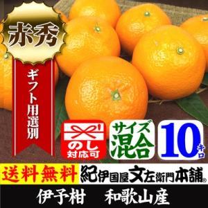 伊予柑 いよかん 秀品10kg 紀州有田産 サイズ混合|bunza