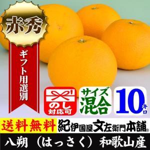 八朔(はっさく・ハッサク) (10kg)(選別:秀品)紀州有田湯浅町栖原産|bunza