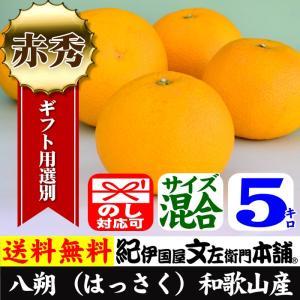 八朔/ハッサク (秀品)(5kg・サイズ混合)紀州有田産はっさく|bunza