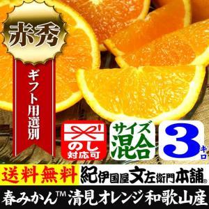 清見オレンジ3kg(ギフト選別品)紀州和歌山有田みかんの里から|bunza