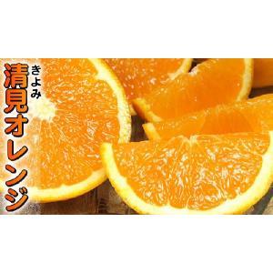 訳あり清見オレンジ5kg・紀州和歌山有田みかんの里から (規格外 不揃い)|bunza|02