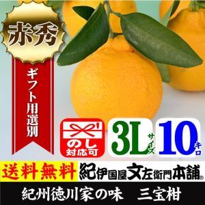 紀州湯浅特産・葉付き三宝柑(3L/10kg)和歌山県有田みかんの里から|bunza