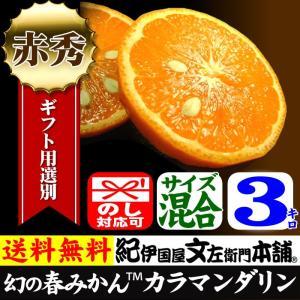 幻の春みかん カラマンダリン ギフト用選別品 3kg  和歌山県産の甘い柑橘|bunza