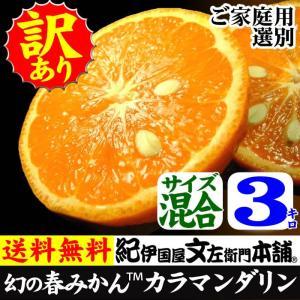 カラマンダリン(春みかん) 規格外 わけあり 訳あり果実ご家庭用 3kg  和歌山県産の甘い柑橘|bunza