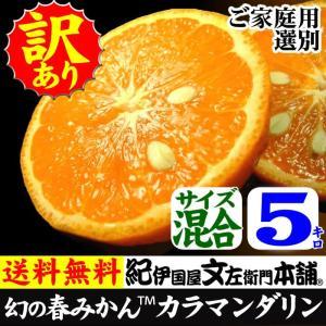 カラマンダリン(春みかん)ご家庭用 規格外 わけあり 訳あり果実 5kg  和歌山県産の甘い柑橘|bunza