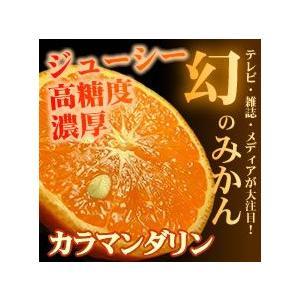 カラマンダリン(春みかん)ご家庭用 規格外 わけあり 訳あり果実 5kg  和歌山県産の甘い柑橘|bunza|02