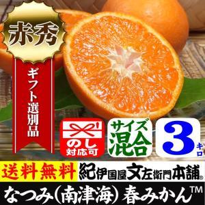 紀州有田みかんの里から・なつみ(南津海)みかん(特選品3kg)ギフト用・この果実は種があります/春みかん・春かんきつ|bunza