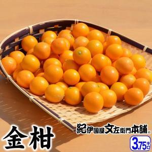 金柑(きんかん)3.75kg 和歌山産|bunza