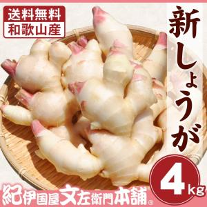 フレッシュ新しょうが4kg入和歌山県産 新生姜 産地直送 自家製 甘酢漬け、紅ショウガ、生姜湯、砂糖漬けに