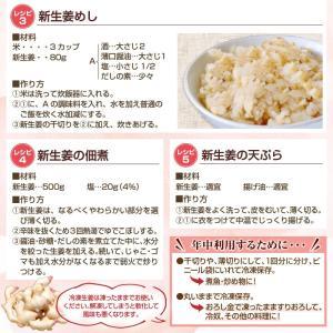 フレッシュ新しょうが4kg入和歌山県産 新生姜 産地直送 自家製 甘酢漬け、紅ショウガ、生姜湯、砂糖漬けに|bunza|04