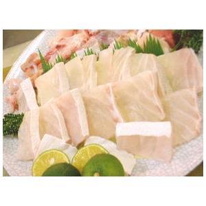 紀州産 本クエ鍋500g (くえ鍋2〜3人前) (冷凍)クエ鍋用 高級食材 最高級|bunza