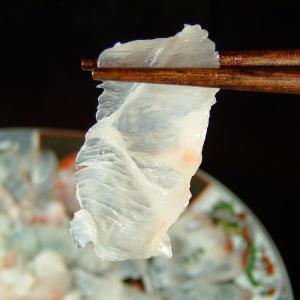 幻の魚『本クエ』お刺身(おさしみ) 薄造りセット うす造り皿盛り(プラスチック皿) 高級食材 最高級|bunza