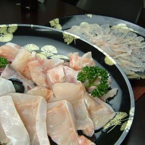 幻の魚(本クエ)ゴージャスセット 本クエ鍋セット+本クエ刺身薄造り  くえ鍋 高級食材 最高級|bunza