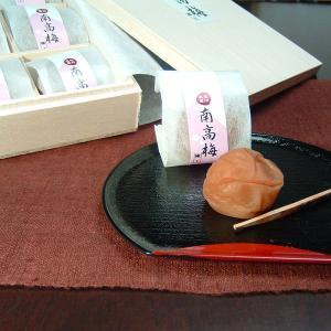 紀州南高梅はちみつ梅干し 木箱入り6粒 個包装 (まろやか仕立て)(4Lサイズ)最高級品/うめぼし・ウメボシ|bunza