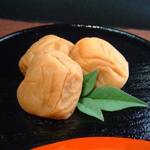 紀州南高梅 はちみつ梅干 味梅 1kg最高級果実(3Lサイズ) (スクラロース)(化粧箱)|bunza