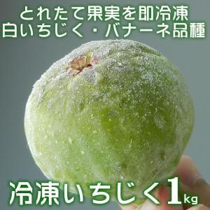 (冷凍)いちじく 1kg 品種:バナーネ (白いちじく・イチジク・無花果/和歌山県有田郡広川町)(クール冷凍便発送|bunza