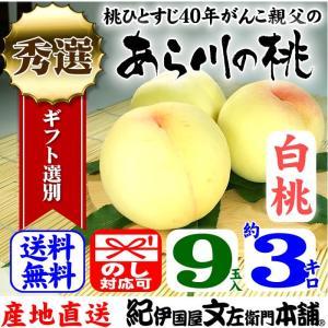 紀州和歌山の「あら川の桃」 (白桃種) 産直和歌山県 手選り(秀選) 約3kg/9玉入|bunza
