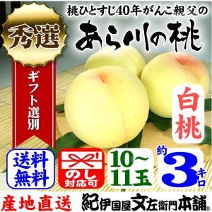 紀州和歌山の「あら川の桃」 (白桃種) 産直和歌山県 手選り(秀選) 約3kg/10〜11玉入|bunza