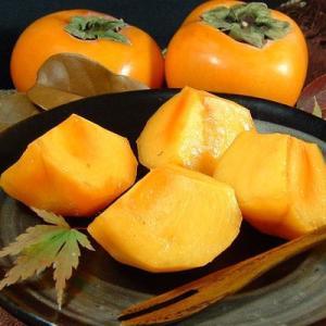 柿・和歌山の柿(贈答用・個装) 西浦さんちの富有柿(完熟) 約3.5〜4kg 12〜16個入|bunza