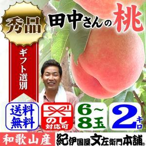 田中さんちの大きなわかやまの桃(もも) 約2kg箱 和歌山県紀の川市産・田中さんちの桃(白鳳・嶺鳳・白桃)|bunza
